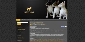 web_nesthor